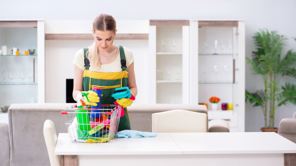 Air bnb cleaning company
