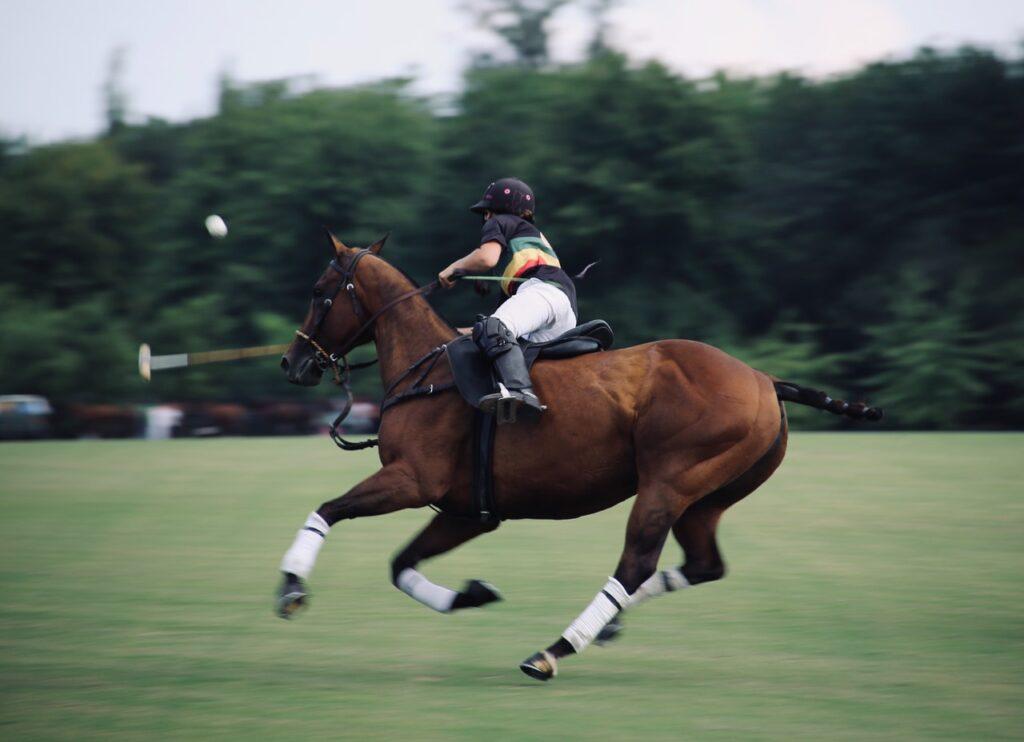 UK Horse Races in 2021